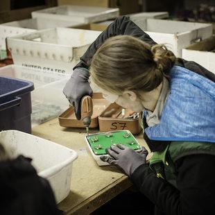 Free Geek volunteer prepares electronics for recycling.