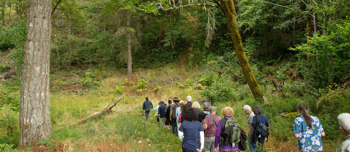 A tour at Chehalem Ridge
