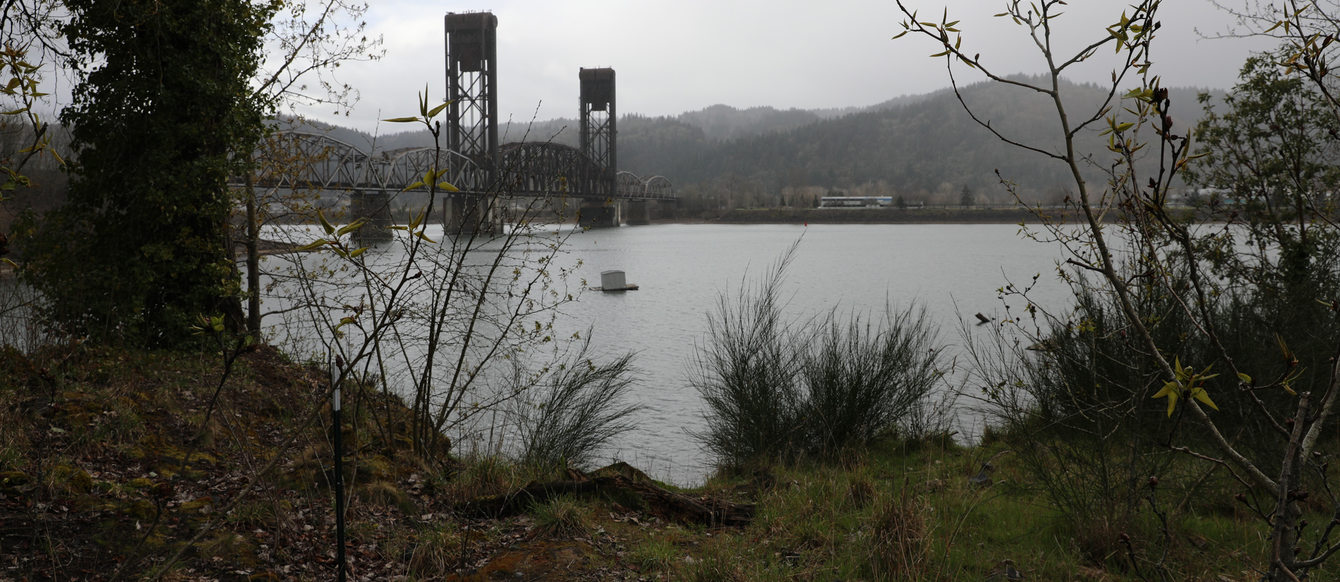 View of the Willamette River from the Willamette Cove site, surrounded by grass and plants, on a cloudy day