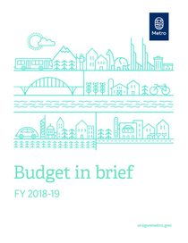 FY 2018-19 budget in brief