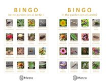 Garden bingo cards C and D