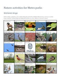 Wetlands bingo