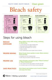 Bleach safety poster