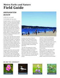 Broughton Beach Field Guide