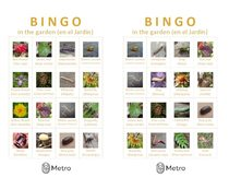 Garden bingo cards M and N