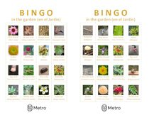 Garden bingo cards A and B