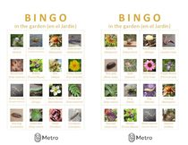 Garden bingo cards S and T