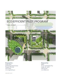 Eco-efficient pilot program report