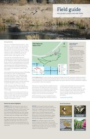 Killin Wetlands Field Guide