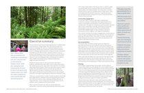 Gabbert Butte Nature Park master plan final draft - executive summary