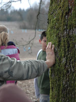 photo of boy touching oak tree