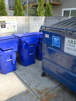 photo of large recycling bin and roll carts