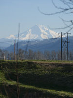 photo of land near Mount Hood