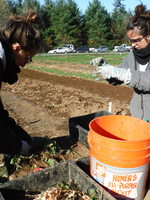 AmeriCorps volunteers work at Metro's Native Plant Center