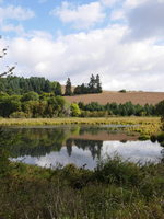 photo of Killin Wetlands