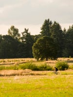 photo of bicyclist at Graham Oaks Nature Park