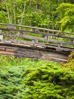 photo of trail in Gresham