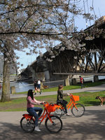 Biketown riders in Waterfront Park