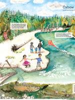 watercolor illustration of Oxbow Regional Park by Sofía Basto