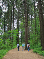 People walking on trail at Glendoveer Nature Park.