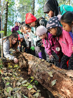 A group of black and brown children from Club Aves look under a nurse log with a Metro nature educator.
