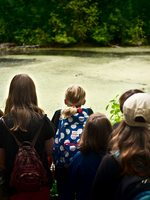 Photo of elementary aged children looking out at algae covered pond at Turtle Turnout at Smith and Bybee