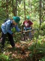 Trailkeepers of Oregon volunteers restoring a trail