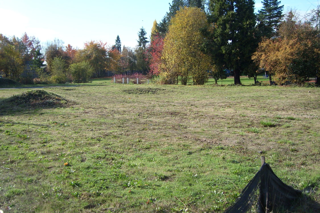 a photo of the grassy property after brownfield improvement