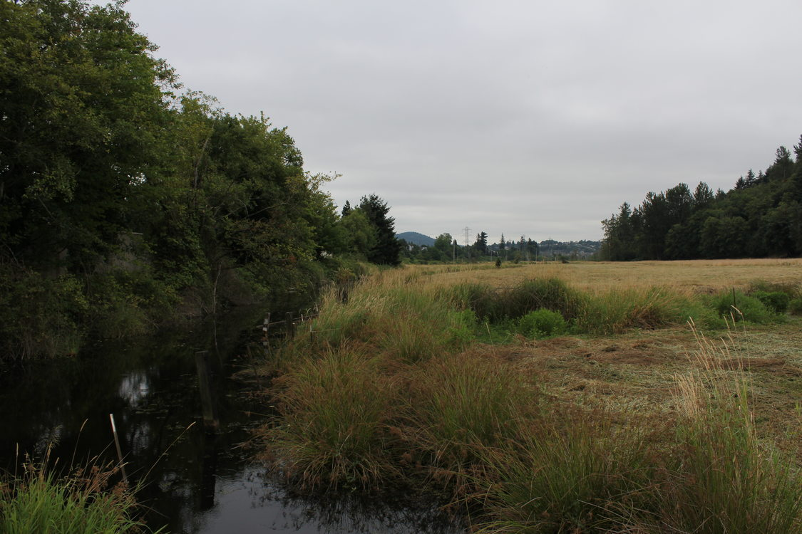 photo of Grant Butte Wetlands