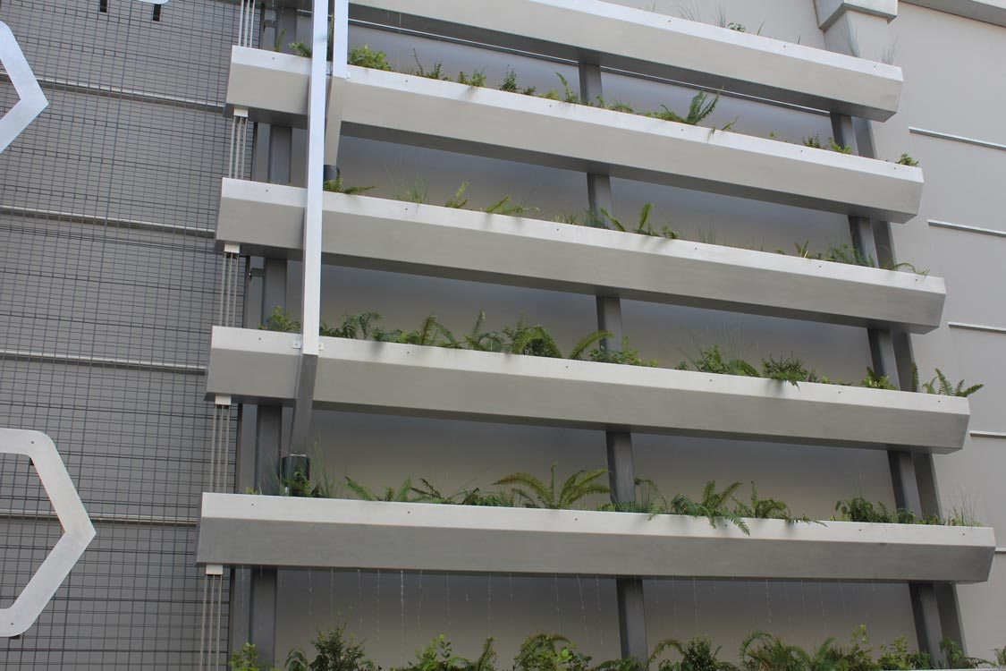 photo of Expo green wall