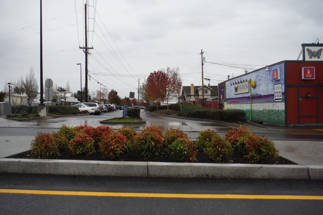 New Main Street green street design