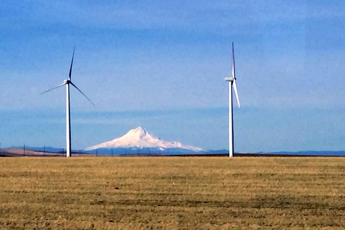 Windmills, wheat and Mount Hood