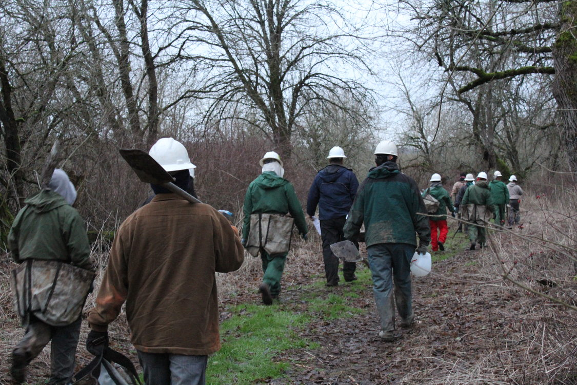 photo of planting crew walking at Smith and Bybee Wetlands