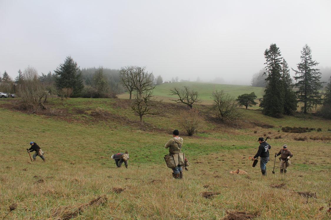 photo of planting crews at North Abbey Creek Natural Area