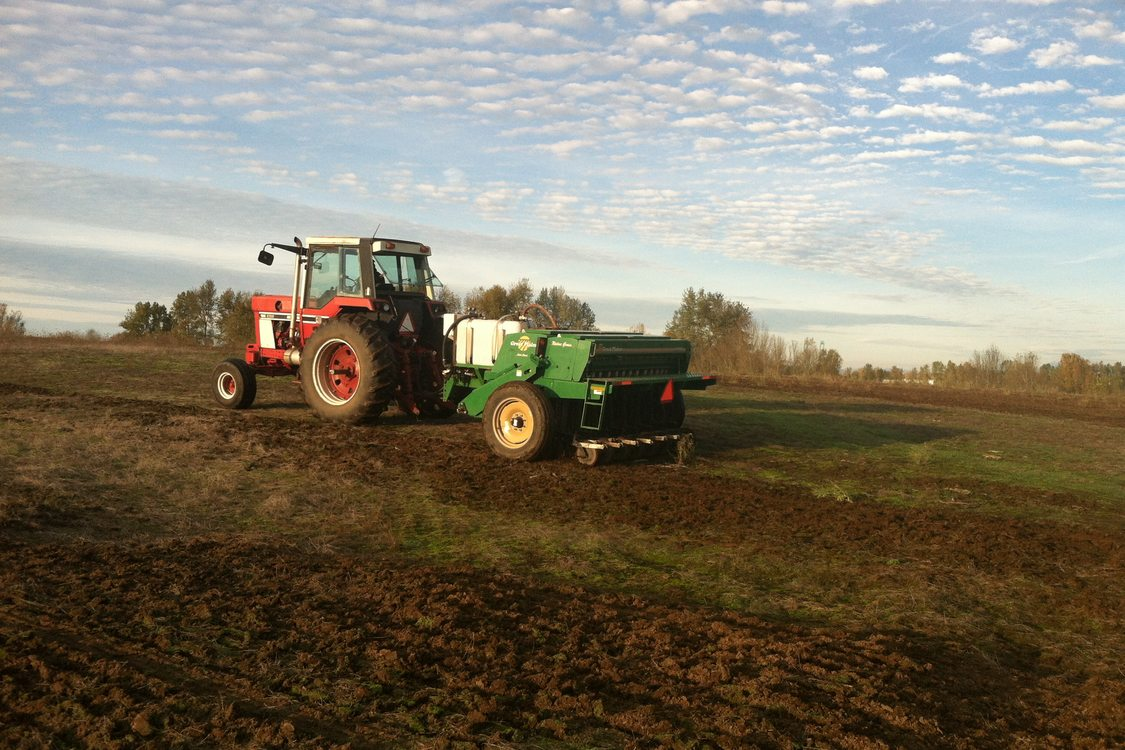 photo of seeding of St. Johns Prairie in November 2014