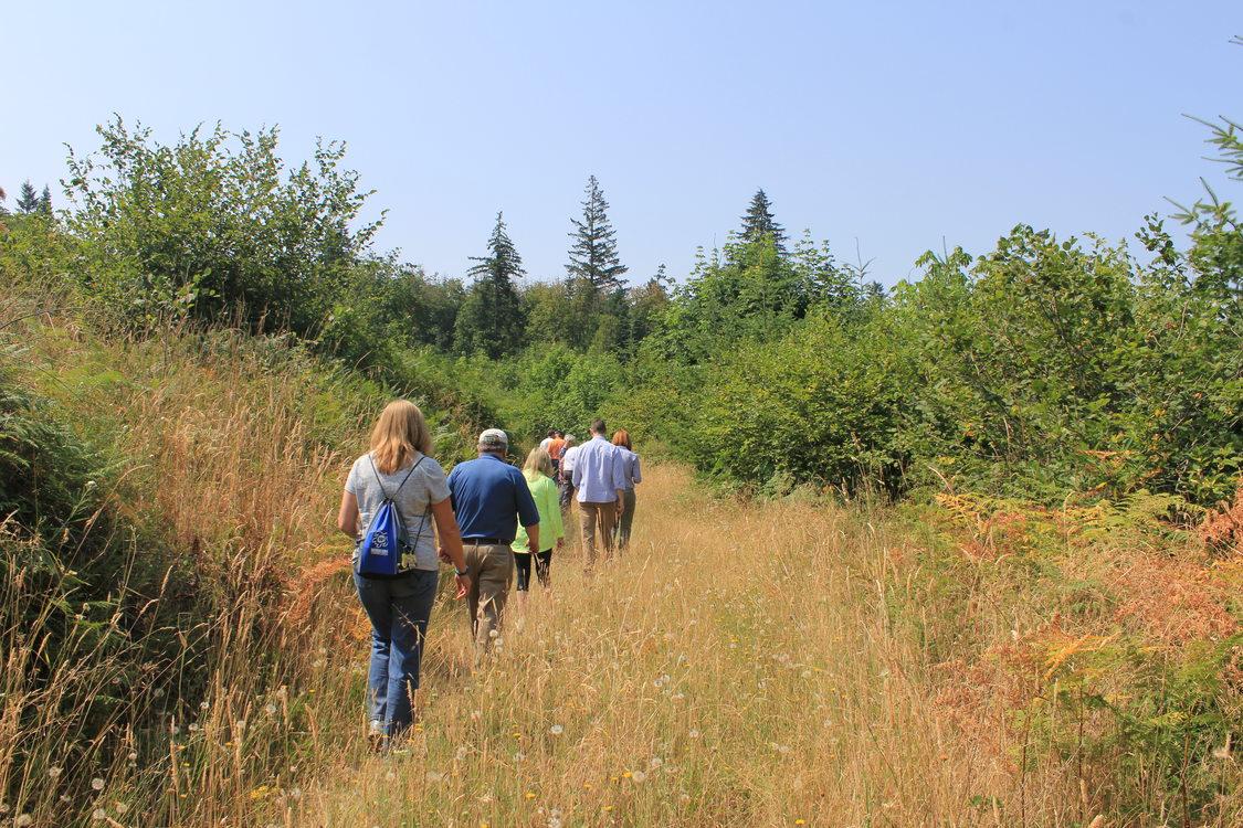 Walking to Wapato Lake viewpoint at Chehalem Ridge