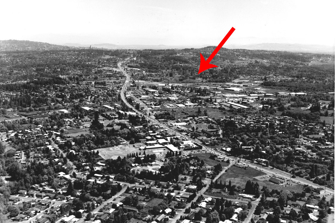 Tigard in 1983