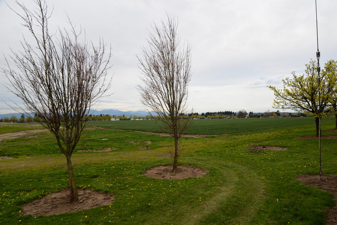 Gresham Vista Business Park in March 2015