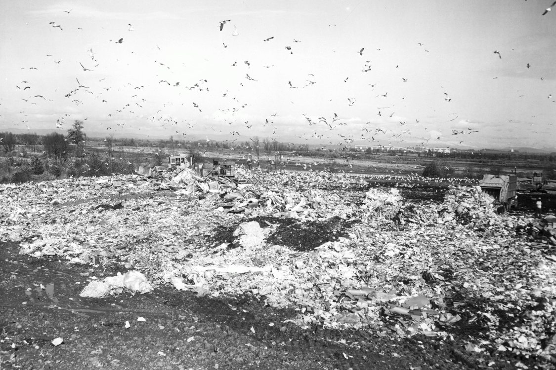 St. Johns Landfill (November 10, 1972)