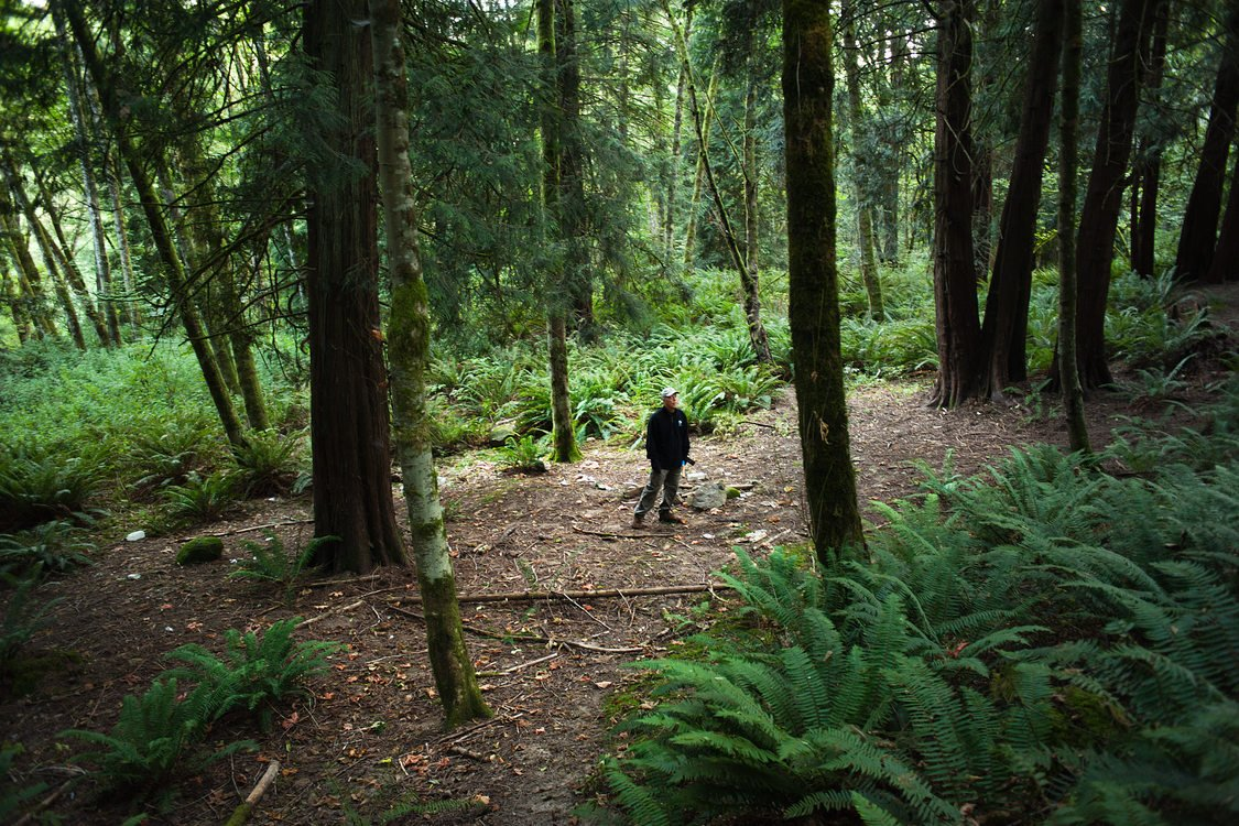Metro's lead natural resources technician Adam Stellmacher standing among tall fir trees and ferns in Newell Creek Canyon