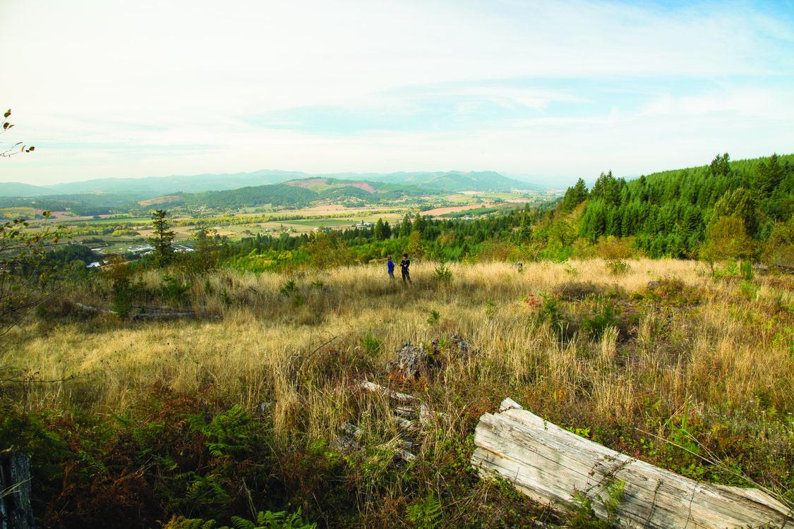 photo of Chehalem Ridge