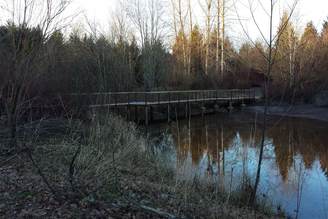 photo of new wetlands trail viewing platform at Blue Lake