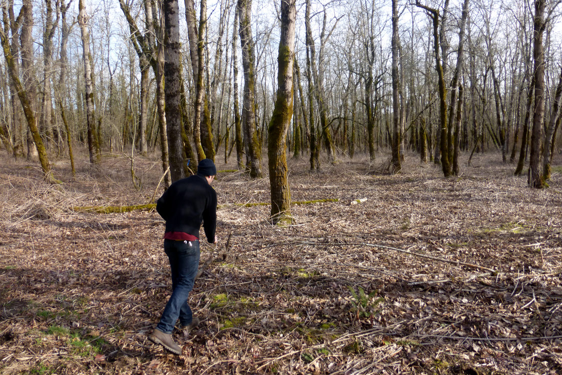 photo of man walking through a wooded area in the Sandy River Delta