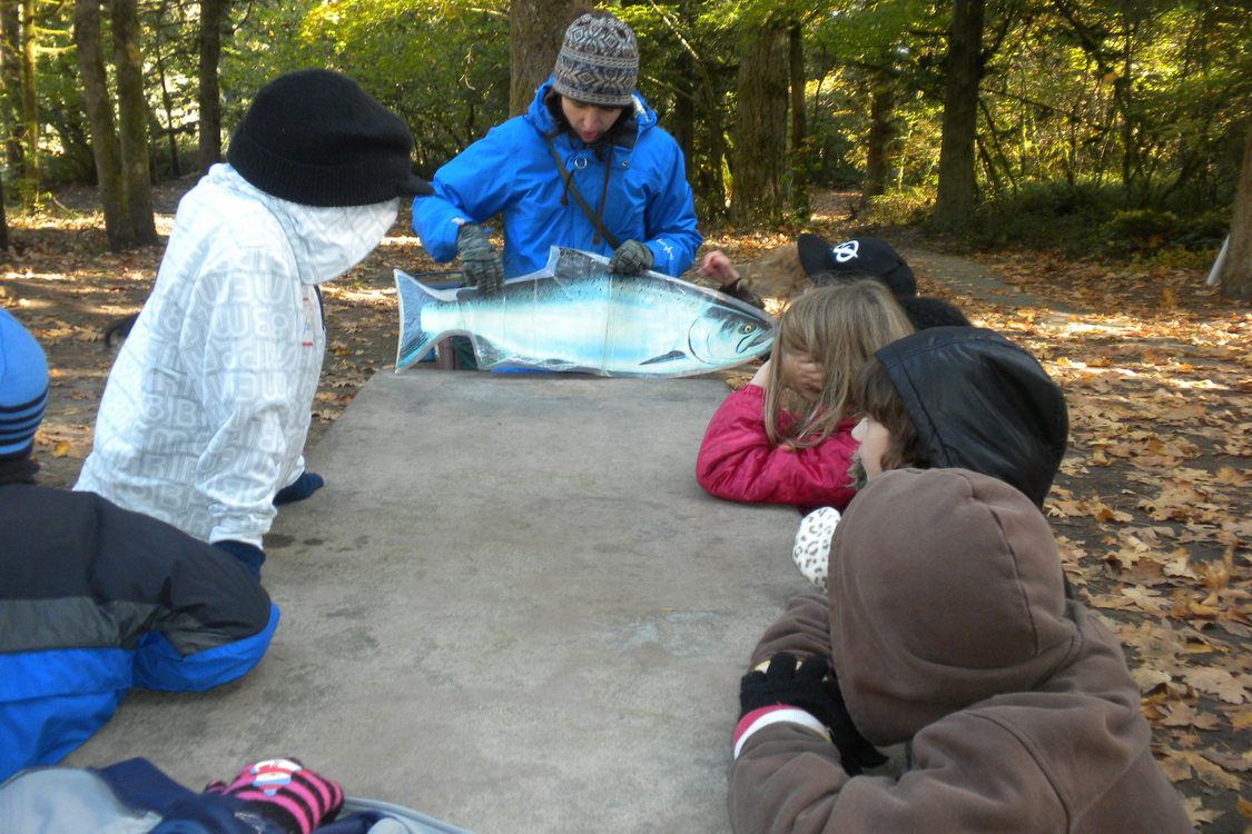 children gathered around a picnic table listening to educator speak about salmon
