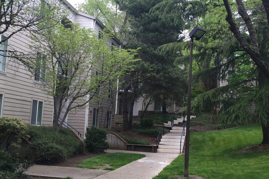 sidewalk in between buildings of apartment complex
