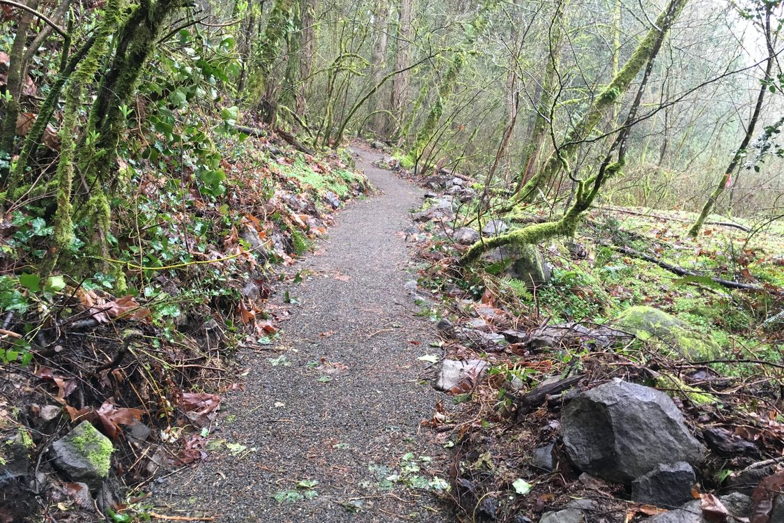 photo of improved Canemah Bluff trails