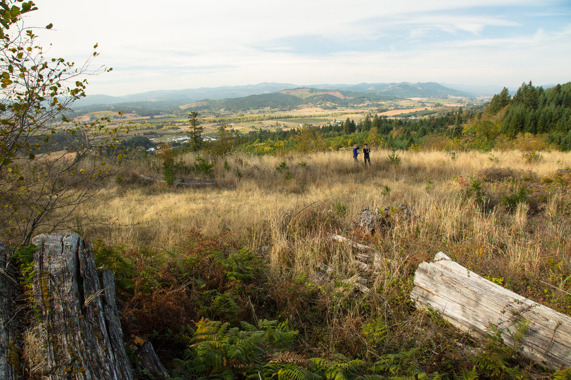 photo of view from Chehalem Ridge