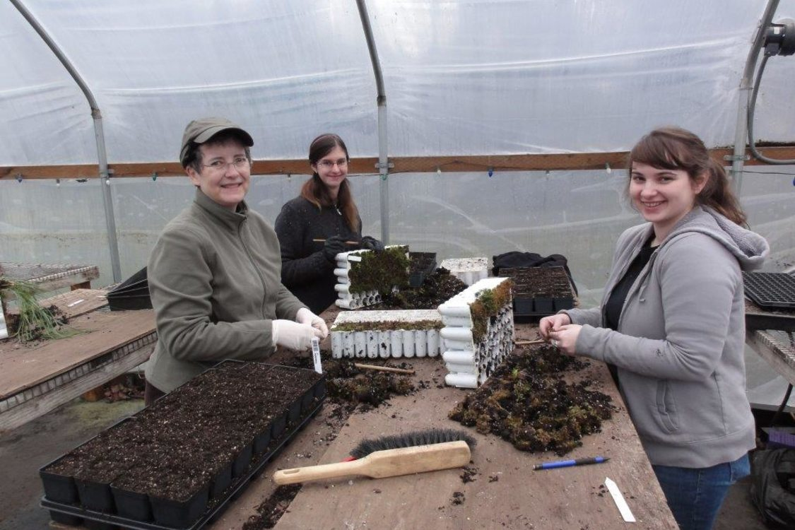 photo of volunteers at the Native Plant Center
