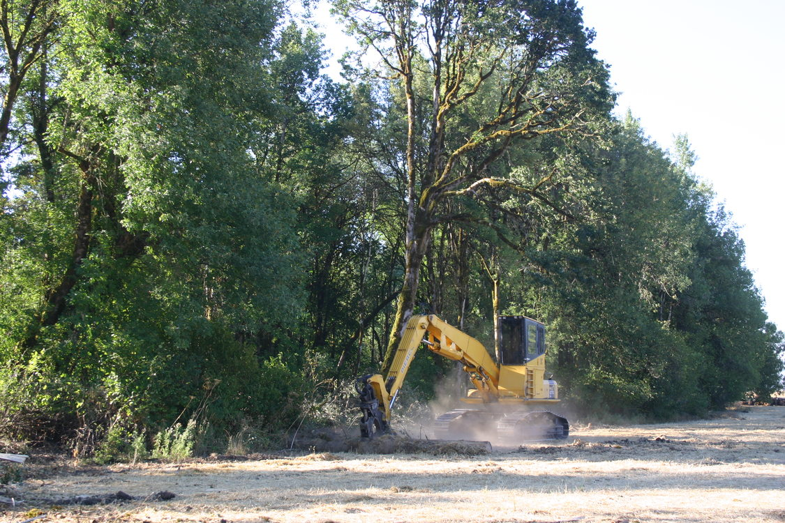 photo of restoration work at Killin Wetlands