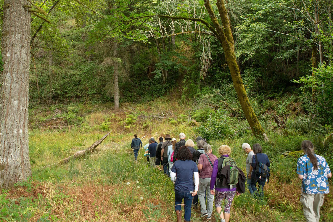 A tour at Chehalem Ridge